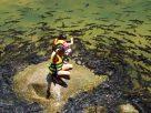 นั่งเล่นกับฝูงปลา ศึกษาประวัติศาสตร์ ที่อุทยานแห่งชาติน้ำตกพลิ้ว