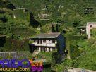 เกาะ shengshan เกาะร้างอันน่าพิศวง ชมสีเขียวขจีของบ้านชาวประมง