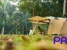 ท่องป่า หาความงามกลางขุนเขาในอำเภอแก่งกระจาน เพชรบุรี